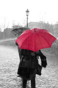 Chiusura servizi e attività del personale impiegato nelle scuole di ogni ordine e grado a seguito di allerta meteo